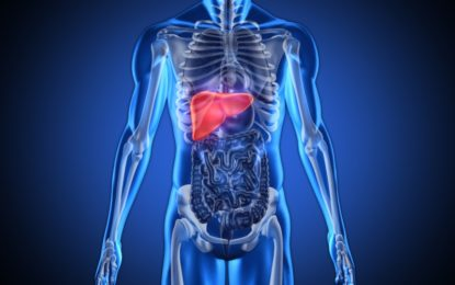 Everything you need to know about your Kidneys!
