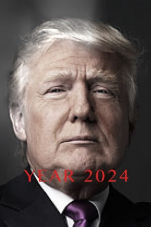 Will Trump Age Faster becoming the President?