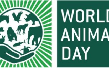 Glowing skin? Go Vegetarian on World Animal Day 2018