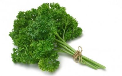 Parsley – A miracle Anti-aging food