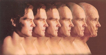 Scientists accidentally stop skin aging with Granzyme B